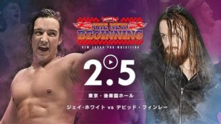 NJPW Road To New Beginning Tokyo 2018 Day 1